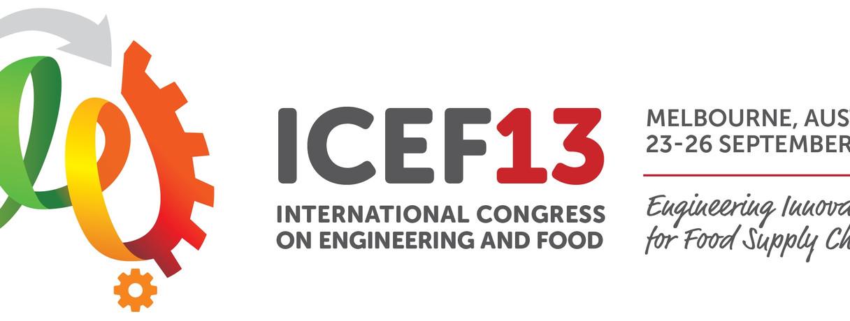 ICEF13