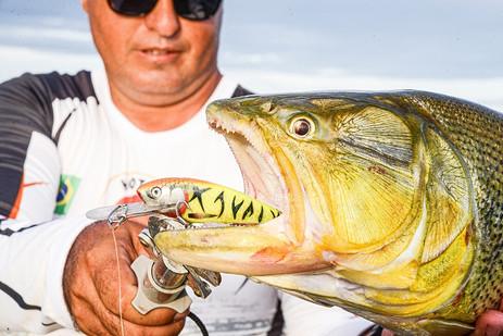 José Augusto mostra dourado pescado na pesca esportiva