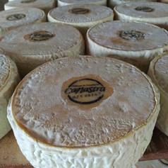 Conheça os 2 queijos Canastra Super Ouro na França