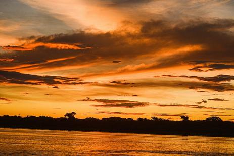 Céu dourado no final de tarde no Pantanal