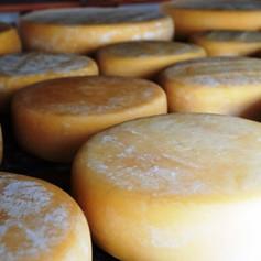 Conheça os queijos Canastra  premiados em concurso estadual