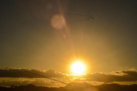 Cena do por-do-sol numa tarde de pesca esportiva