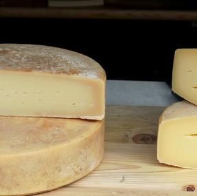 Embalagem inteligente no queijo Canastra