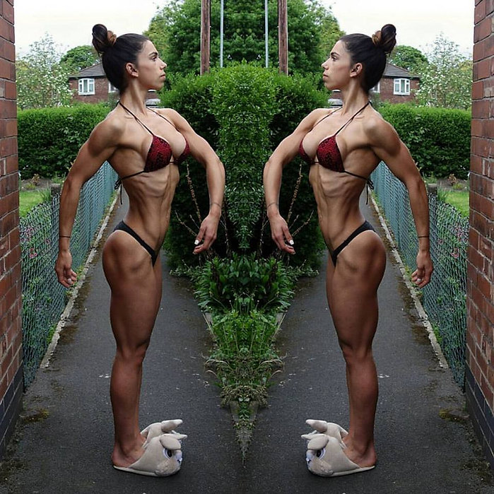 treino musculação hipertrofia