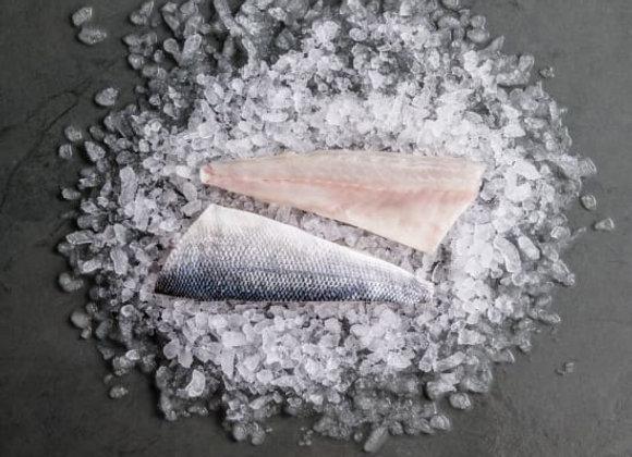 Seabass Fillet