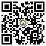 WhatsApp Image 2021-04-05 at 11.43.33.jp