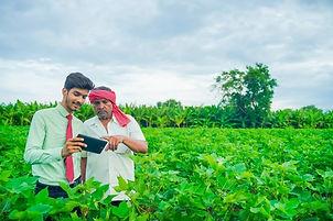 jovem-agronomo-e-agricultor-inspecionand