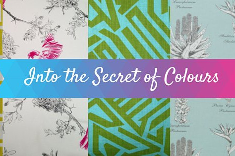Add Colour to your Home!