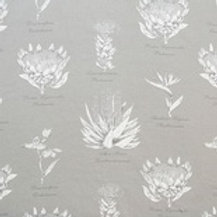 Botanical Protea (Grey)