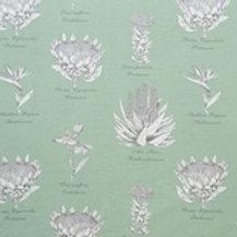 Botanical Protea (Mint)