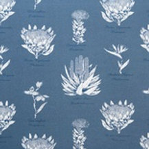 Botanical Protea (Navy-Blue)