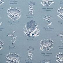 Botanical Protea (Blue-grey)