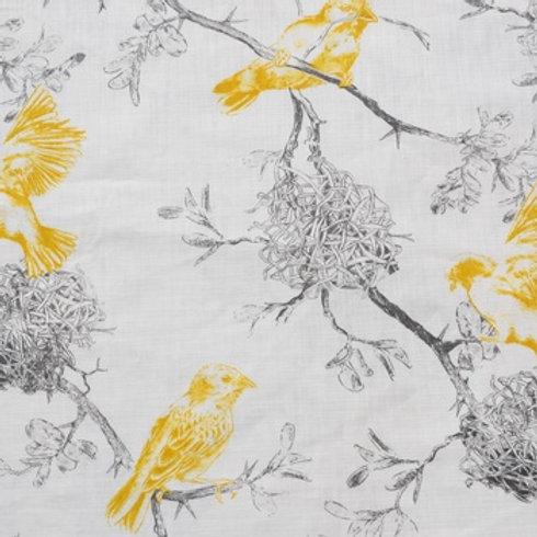 African Weaver (Sun Flower)