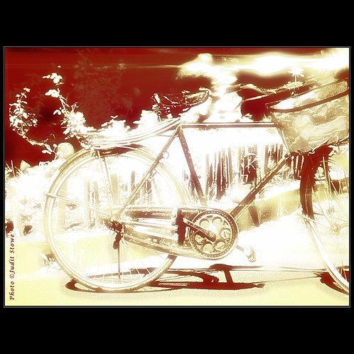 Bicycle with Flowers - Vélo avec des Fleurs