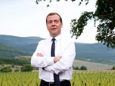 Медведев: границы рано или поздно откроются