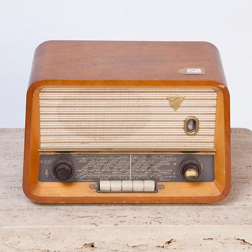 #229 / Radio Biennophone - Mürren 5905