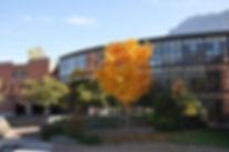 LG_Herbst.jpg