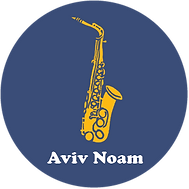 logo-aviv.png