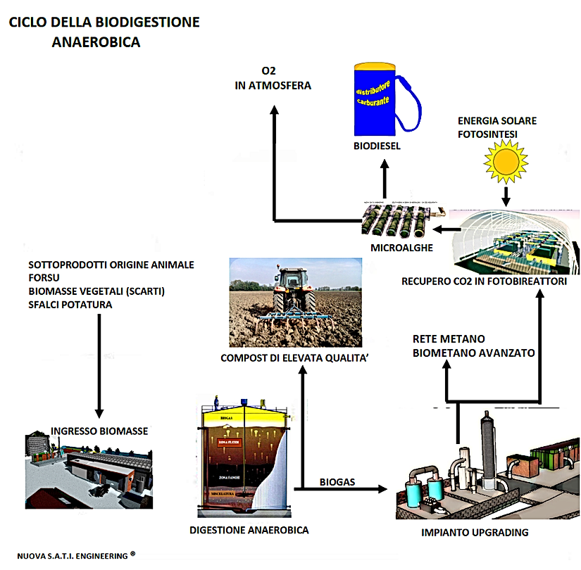 CICLO BIOGAS.png