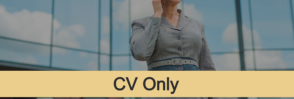 Senior-Level CV Only