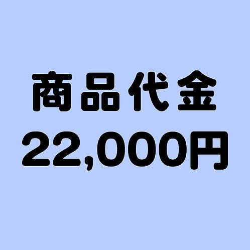 商品代金 22000円