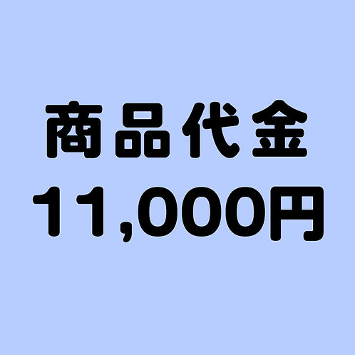 商品代金 11000円