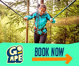 Girl on high ropes course at Go Ape