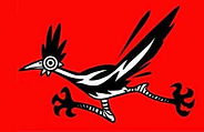 cartoon of roadrunner bird