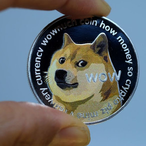 Dogecoin Is the GameStop of Cryptos
