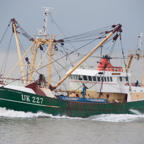 Fish & Chips anyone? Fishing Rights Last Hurdle, EU Says: Brexit Update, Sterling rises.