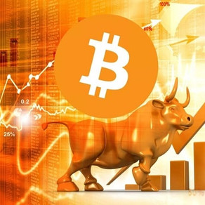 Buy or not to buy? Will the Bitcoin Price Rally Last This Time?