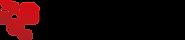 rapidz_logo.png