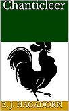 rooster cov.jpg