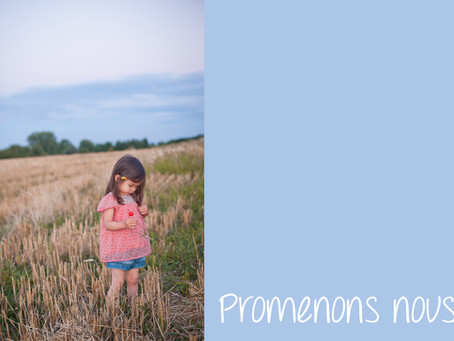 A walk in the fields - West hollywood kids photographer