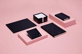 RL 2018 Pink and Ox Blue Group (LR) .jpg