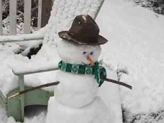 No-Snow Snowman!