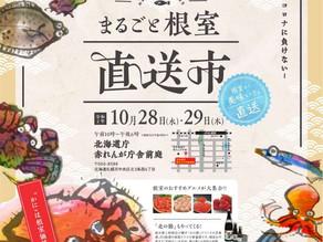 北海道庁赤れんが庁舎前庭において「まるごと根室直送市」を開催いたします!