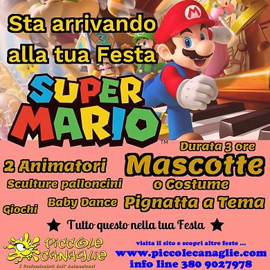Animazion Bambini Festa a Tema Super Mario Volantino Festa