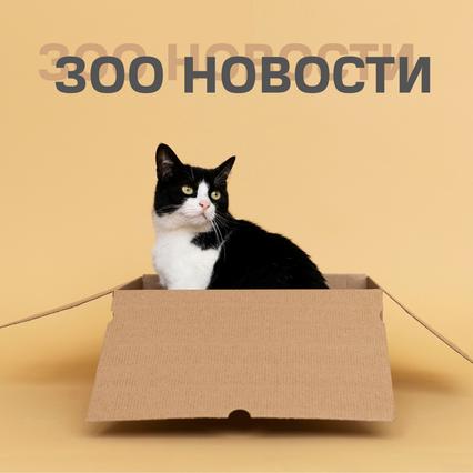 ТОП новостей 15.09.2021—29.09.2021