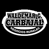 logo-wca-512-02.png