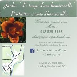 Jardin_le_temps_d'une_hémérocalle