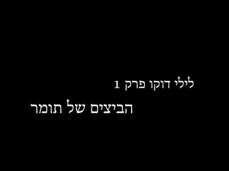 לילי דוקו פרק 1 - הביצים של תומר