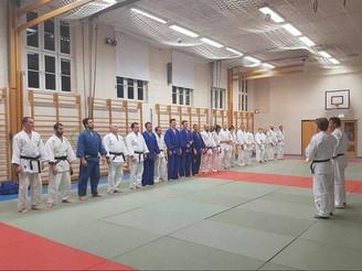 Judofest hos Romerike