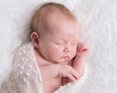 shropshire newborn photography
