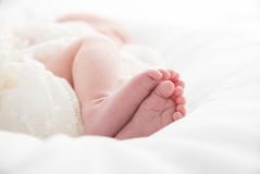 shrewsbury newborn photographer