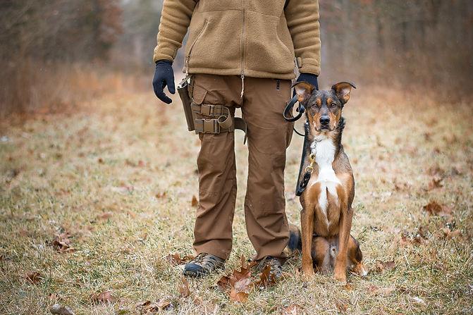 MILITARY DOG VETERAN HEMP CBD CANNABIS MARINE