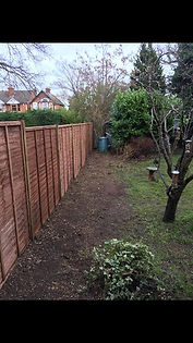 conifer hedges removed stumps  fencing i