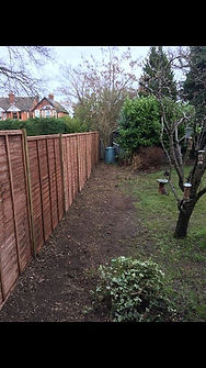 conifer hedges removed stumps  fencing i