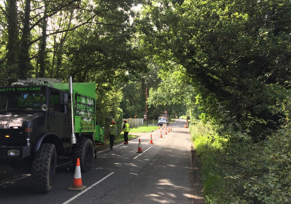 road side tree trimming in sindlesham