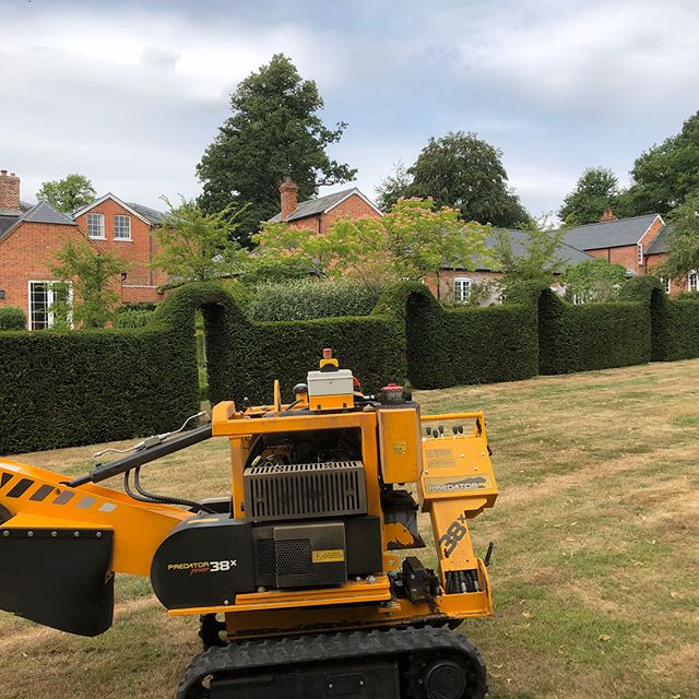Phase 2 on this site we are Out with our stump grinder